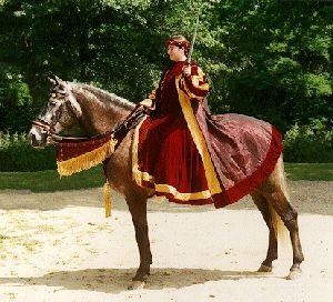 Spanish-Norman Horse